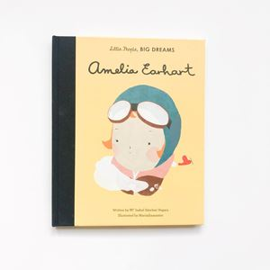 Picture of Amelia Earhart Kids Book