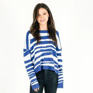 Picture of cobalt zebra sweater