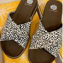 Picture of Cheetah Sandal